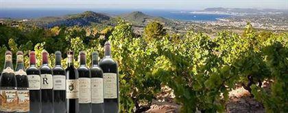 vin rosé Provence