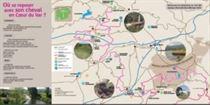 randonnée à cheval en Provence et Var