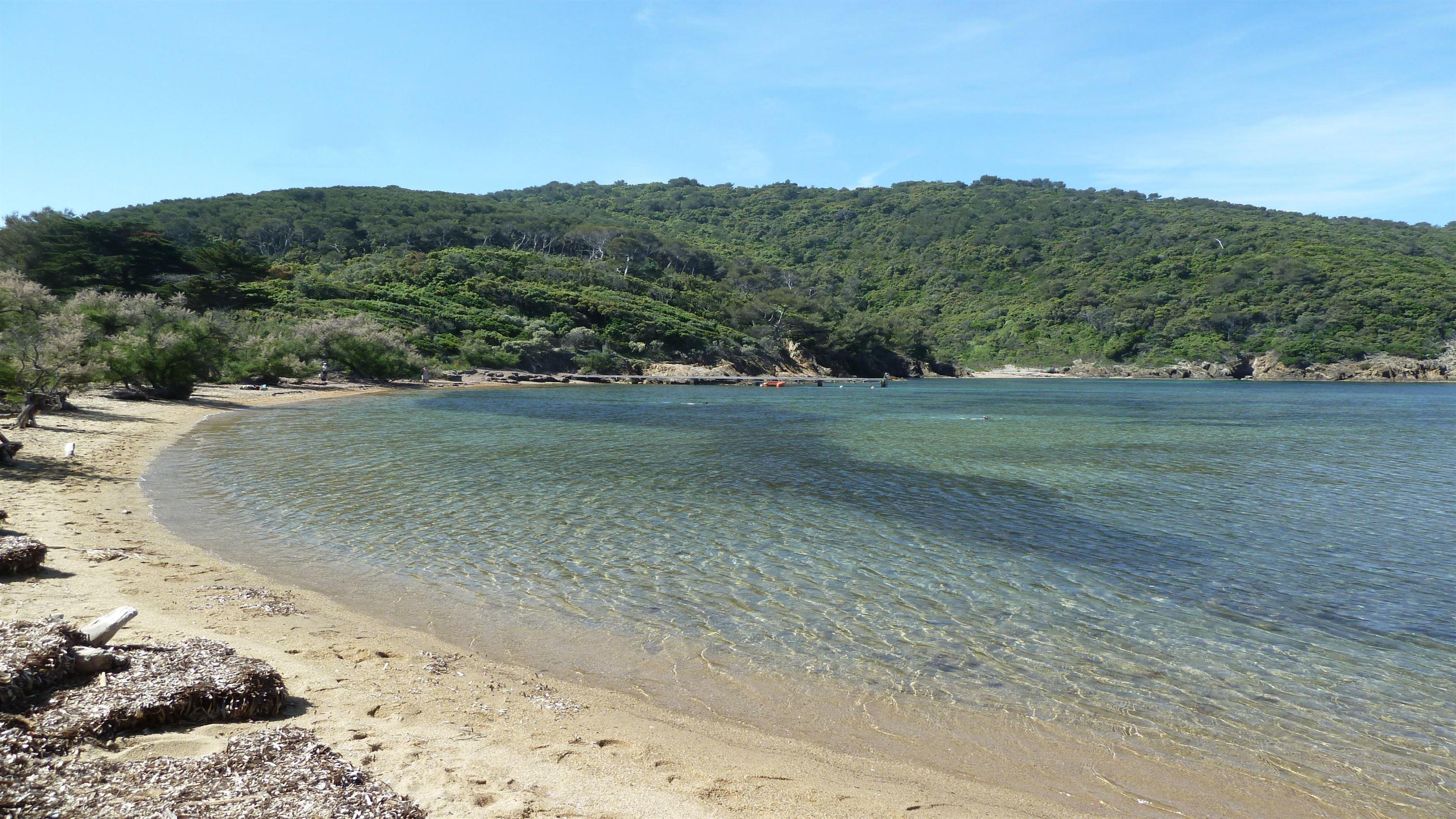 magnifique plage sud France var provence port cros palud