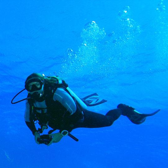 plongée sous-marine dans le Var