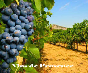 vin de provence