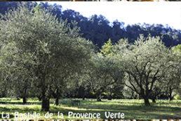 Chambre d'hôtes de charme Provence Var