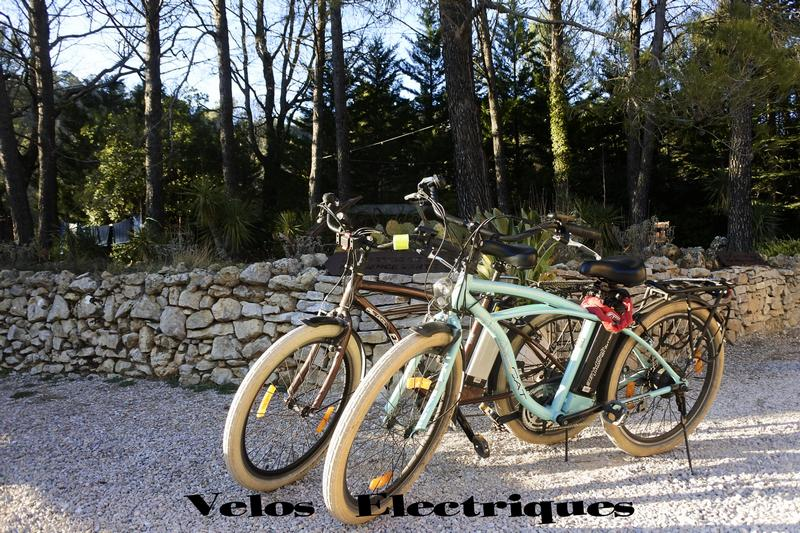 electric bikes in Provence